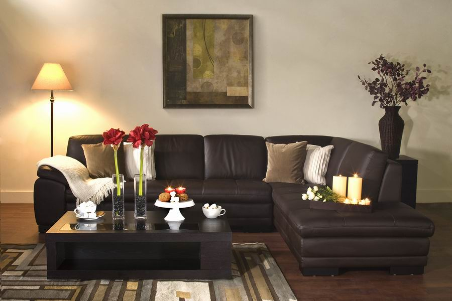 Diana Brown Leather Modern Sectional Sofa W Chaise