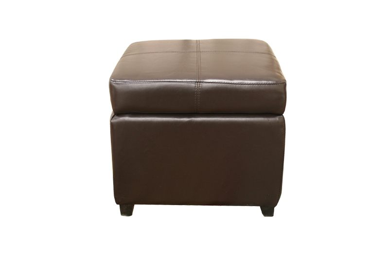 Pandora Leather Storage Ottoman In Dark Brown