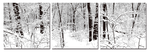 Baxton Studio Winter Woods Mounted Photography Print Triptych Winter Woods Mounted Photography Print Triptych, B-4003ABCcompare Winter Woods Mounted Photography Print Triptych, best price onWinter Woods Mounted Photography Print Triptych, discount Winter Woods Mounted Photography Print Triptych, cheap Winter Woods Mounted Photography Print Triptych
