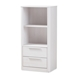 Baxton Studio Carlingford Modern and Contemporary Whitewashed Wood 2-Drawer Bookcase - IEBC 1260-05-Whitewash