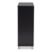 Baxton Studio Shirley Modern and Contemporary Dark Grey Finished 2-Door Wood Shoe Storage Cabinet with Open Shelves - IESR-002-Dark Grey