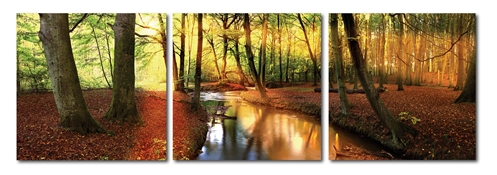 Baxton Studio Forest Oasis Mounted Photography Print Triptych Forest Oasis Mounted Photography Print Triptych, DE-3054ABCcompare Forest Oasis Mounted Photography Print Triptych, best price onForest Oasis Mounted Photography Print Triptych, discount Forest Oasis Mounted Photography Print Triptych, cheap Forest Oasis Mounted Photography Print Triptych