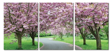 Baxton Studio Spring in Bloom Mounted Photography Print Triptych Spring in Bloom Mounted Photography Print Triptych, DE-3062ABCcompare Spring in Bloom Mounted Photography Print Triptych, best price onSpring in Bloom Mounted Photography Print Triptych, discount Spring in Bloom Mounted Photography Print Triptych, cheap Spring in Bloom Mounted Photography Print Triptych