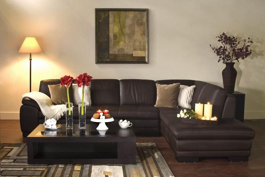 Dark Brown Leather Living Room Furniture | Zef Jam