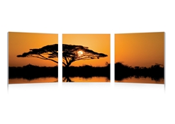 Baxton Studio Savannah Sunset Mounted Photography Print Triptych Savannah Sunset Mounted Photography Print Triptych, PM-0134ABCcompare Savannah Sunset Mounted Photography Print Triptych, best price onSavannah Sunset Mounted Photography Print Triptych, discount Savannah Sunset Mounted Photography Print Triptych, cheap Savannah Sunset Mounted Photography Print Triptych