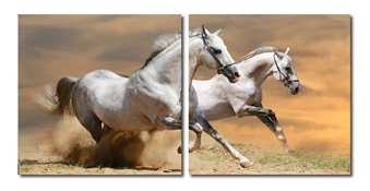 Baxton Studio Galloping Grandeur Mounted Photography Print Diptych Baxton Studio Galloping Grandeur Mounted Photography Print Diptych, VC-2055AB compare Baxton Studio Galloping Grandeur Mounted Photography Print Diptych, best price on Baxton Studio Galloping Grandeur Mounted Photography Print Diptych, discountBaxton Studio Galloping Grandeur Mounted Photography Print Diptych, cheapBaxton Studio Galloping Grandeur Mounted Photography Print Diptych