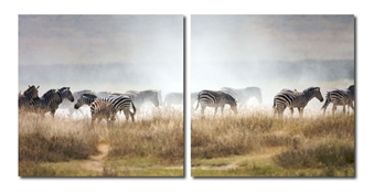 Baxton Studio A Zeal of Zebras Mounted Photography Print Diptych Baxton Studio A Zeal of Zebras Mounted Photography Print Diptych, VC-2056AB compare Baxton Studio A Zeal of Zebras Mounted Photography Print Diptych, best price on Baxton Studio A Zeal of Zebras Mounted Photography Print Diptych, discountBaxton Studio A Zeal of Zebras Mounted Photography Print Diptych, cheapBaxton Studio A Zeal of Zebras Mounted Photography Print Diptych